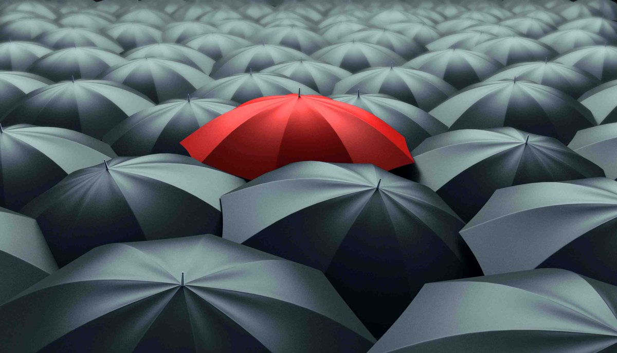 A General Guide To What Is An Umbrella Company